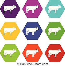Cow icon set color hexahedron