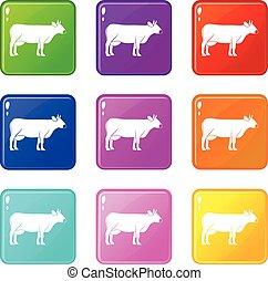 Cow icons 9 set