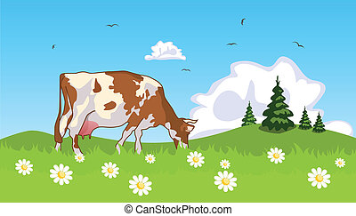 Cow in the meadow at the edge of grove