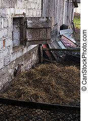 Cow manure on pile on farmland