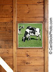 Cow meadow view from wooden window