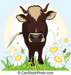Cow on green field