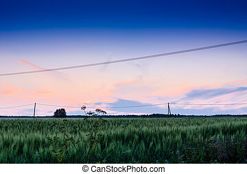 Another beautiful summer sunset in the Northern Finland by the fields.