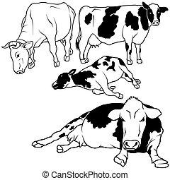 Cow Set 01 - black hand drawn illustration