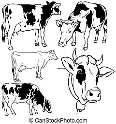 Cow Set 02 - black hand drawn illustration