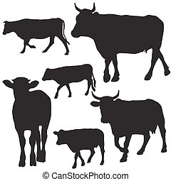 Cow set drawing with floral ornament decoration