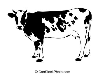 Cow silhouette on white background