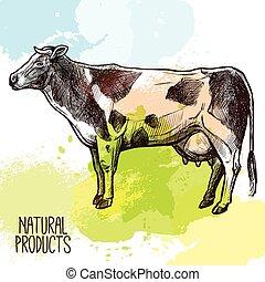 Cow Sketch Illustration