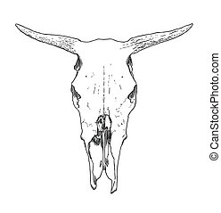 Cow Skull Illustrations And Clip Art 1 279 Cow Skull Royalty Free