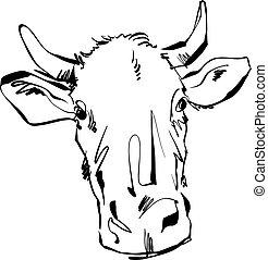 cow., vaca, ilustração, mão, pretas, desenhado, branca