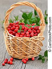 cowberries, korb