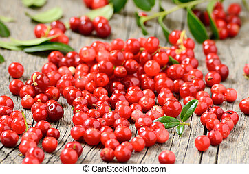Cowberries on table
