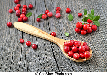 Cowberry in the wooden spoon on rustic table.
