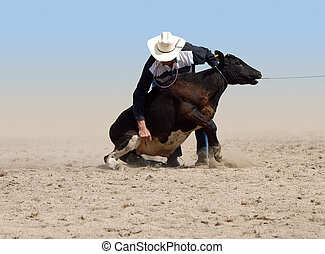 Cowboy about to tie a Calf with a piggin string