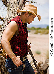 Cowboy by the tree - american, bicep, bluegrass, branch, ...