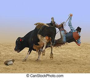 Cowboy Falling of a Bull