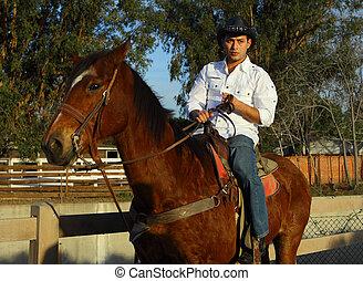 cowboy, paardrijden, zijn, paarde