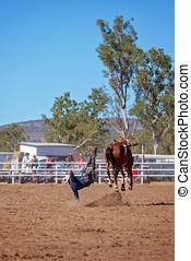 cowboy, reiten, a, bocken, bronc, pferd, an, a, land, rodeo