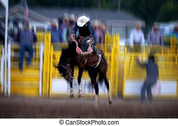 Cowboy Riding Bucking Bronco at Rodeo