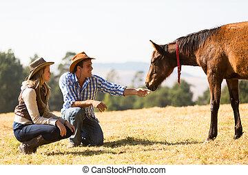 cowgirl, poulain, cowboy jouant