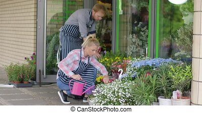 Coworkers in floral shop watering plants - Man and woman...