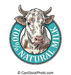 Cows head. 100 % Natural Milk. Vintage vector engraving