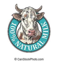 Cows head. 100 % Natural Milk. Vintage vector engraving