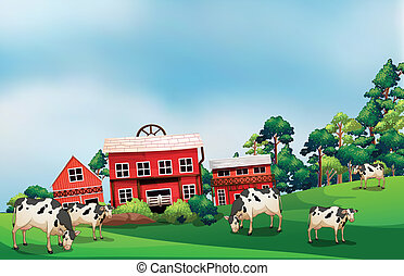 Cows in the farm