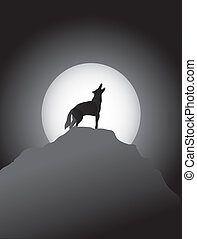 Coyote Howling at the Moon - coyote howling and a very large...