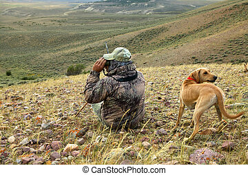 Coyote hunter and dog scanning for prey from hill