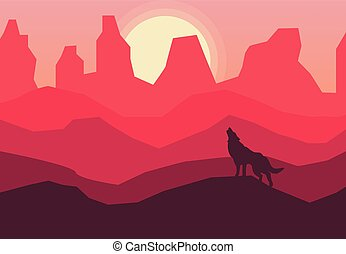coyote on a desert background at sunset