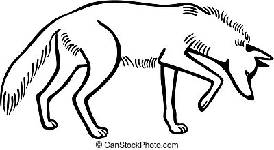vector drawing of a coyote looking at something on the ground