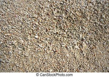cozumel, ö, västindisk strand, sand