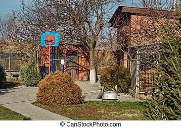 Cozy backyard patio area with basketball hoop