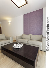 Cozy flat - living room interior, grey couch