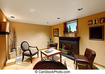 Cozy sitting area in basement room with decorative...