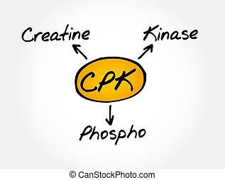 CPK - creatine phosphokinase acronym, medical concept
