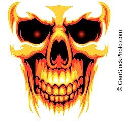 cráneo humano, plano de fondo