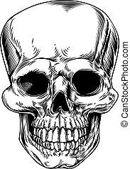 cráneo, vendimia, ilustración