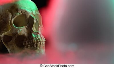 crâne, closeup, fumée, lumière noire, arrière-plan rouge
