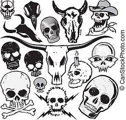 crâne, collection