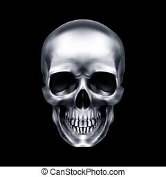 crâne, humain