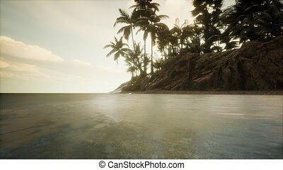crépuscule, marin, plage, exotique, surprenant, doux