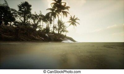 crépuscule, surprenant, doux, plage tropicale, marin