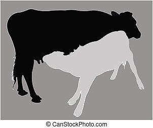 cría, vaquita, leche, vect, silueta