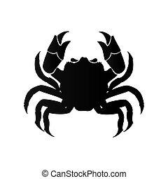 crab animal cancer zodiac