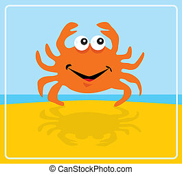 crab - A little crab on the beach