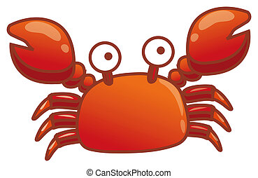 Crab - illustration drawing of red crab isolate in a white...