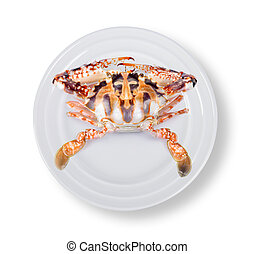 crab in plate on white background