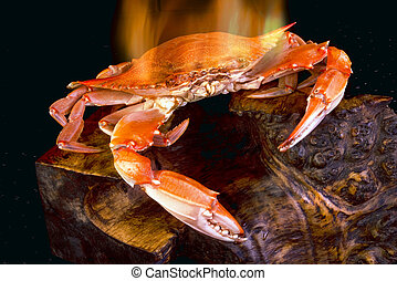 Crab on Fire.